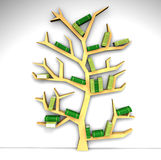 Bookshelf in the shape of tree Royalty Free Stock Images