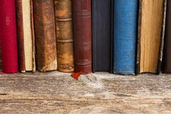 Bookshelf. Wooden bookshelf with row of antique books close up stock images