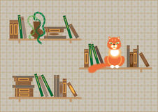 Bookshelves and a cat Stock Photo