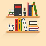 Bookshelves with different books on it, interior and study illustration. royalty free illustration