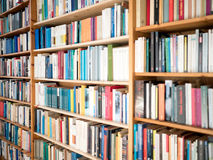 Bookshelves. In the living room Royalty Free Stock Photography