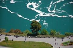 Boom bij dalingen Niagara Stock Foto