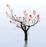 Boom in de herfst vector illustratie