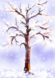 Boom in de winter Royalty-vrije Stock Fotografie