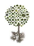 Boom die van bomen wordt gemaakt royalty-vrije stock afbeeldingen
