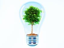Boom in een lamp royalty-vrije illustratie