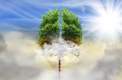 Boom in een vorm van longen met schoorsteen in plaats van boomstam stock afbeeldingen