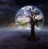 Boom en aarde royalty-vrije illustratie