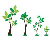 Boom en bladeren groen vastgesteld vectorontwerp Stock Foto's