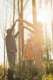 Boom gelukkige kinderen die samen in het park spelen Royalty-vrije Stock Foto
