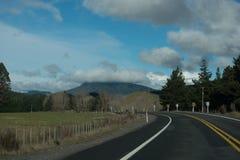 Boom gevoerde weg onder bewolkte hemel die aan de linkerzijde buigen Royalty-vrije Stock Afbeelding