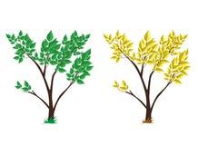Boom groen en geel vastgesteld vectorontwerp Stock Afbeelding