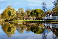 Boom in het park royalty-vrije stock fotografie