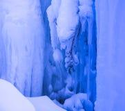 Boom in ijs wordt bevroren dat stock afbeeldingen