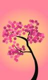 Boom met bloemen Stock Afbeeldingen