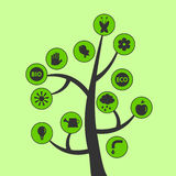 Boom met ecologische pictogrammen Royalty-vrije Stock Foto