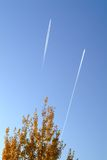 Boom met vliegtuig royalty-vrije stock foto's