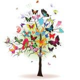 Boom met vlinder Stock Foto