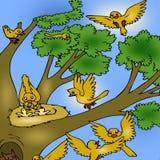 Boom met vogels stock illustratie