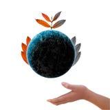 Boom op de Aarde Stock Afbeeldingen