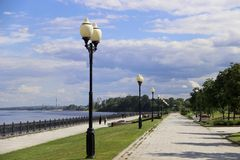Boom op gebied Volga de dijk-parel van Yaroslavl royalty-vrije stock foto