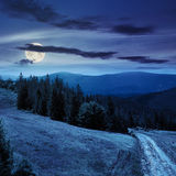 Boom op hellingsweg door meadowonhelling bij nacht Royalty-vrije Stock Fotografie