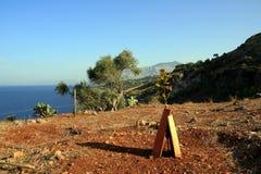 Boom op kust van Sicilië stock foto