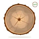 Boom-ringen op logboek vector illustratie