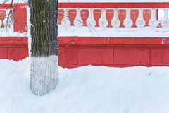 Boom rode muur en sneeuw in de stad Royalty-vrije Stock Fotografie