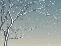 Boom in sneeuwval Royalty-vrije Stock Foto's