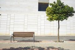 Boom tegen moderne witte buitenkant met bank Stock Foto