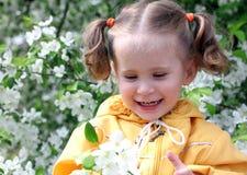 Boom van de meisje de dichtbij tot bloei komende appel Stock Fotografie