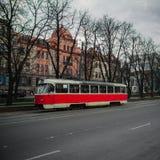 Boom van de weg de rode tram Royalty-vrije Stock Fotografie