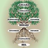 """Boom van de Yggdrasil†de """"vectorwereld van Skandinavische mythologie Royalty-vrije Stock Fotografie"""