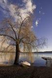 Het meer van Viverone Royalty-vrije Stock Foto's