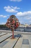 Boom van Liefde, Brug Luzhkov Royalty-vrije Stock Fotografie