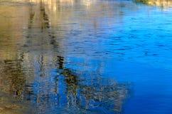 Boombezinning over water Stock Afbeeldingen
