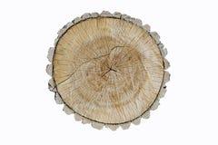 Boomboomstam insnijding Textuur van de groeiringen van esp en houten barsten stock afbeelding