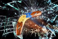 Boomerang volant rapidement Images libres de droits