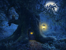 Boomhuis in het magische bos Royalty-vrije Stock Fotografie