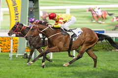 Booming Delight wins Pearce Memorial Challenge Cup in Hong Kong Stock Photo
