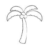 Boompalm met kokosnoot stock illustratie
