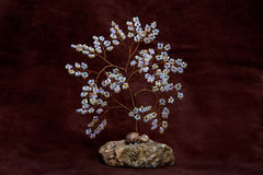 Boomparels op steen Royalty-vrije Stock Afbeeldingen