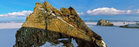 Boomschaduw op de rots Stock Foto's