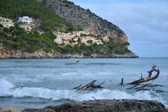 Boomstam op het strand royalty-vrije stock afbeeldingen