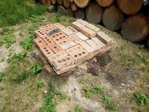 Boomstomp met rode bakstenen en gestapeld brandhout stock fotografie