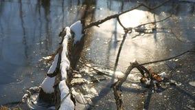 Boomtak in de winter die van het de aardlandschap van de ijs bosrivier wordt bevroren stock videobeelden