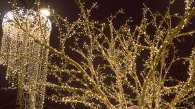 Boomtakken in feestelijke lichten worden verpakt dat Kerstmisstraatlantaarns stock videobeelden
