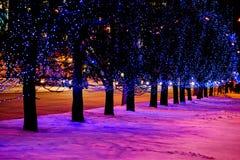 Bożonarodzeniowe światła w ulicie Zdjęcia Stock