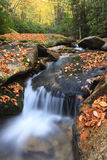Boone Fork Creek Western North Carolina Vertical Stock Photo
